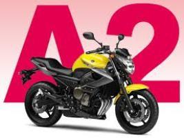 Réforme permis moto : les changements à savoir